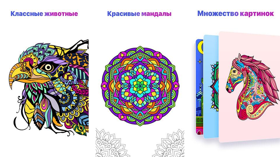 Картинки по номерам – раскраски онлайн на андроид